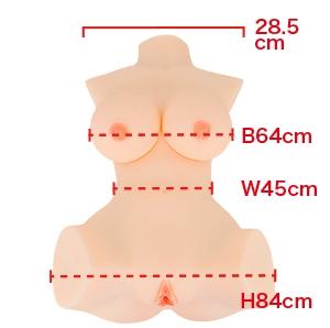 肉体関係サイズ