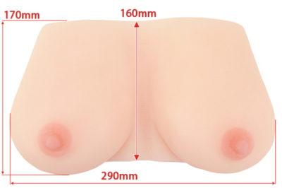 ガチで乳のサイズ