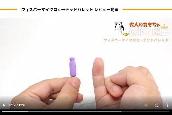 ウィスパーマイクロヒーテックバレット動画